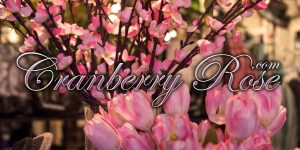 Cranberry Rose Boutique & Gift Online Gift Card (Electronic Delivery)